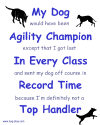 Agility Excuses: Could have been Champion design
