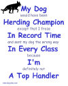 DogPlay's Top Handler Herding Shops